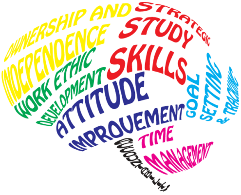 Peak Academic Coaching Core Principles